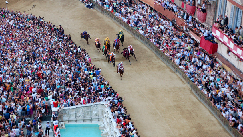 """Palio di Siena 2016: cavalli assegnati, diretta TV e streaming prima prova"""""""